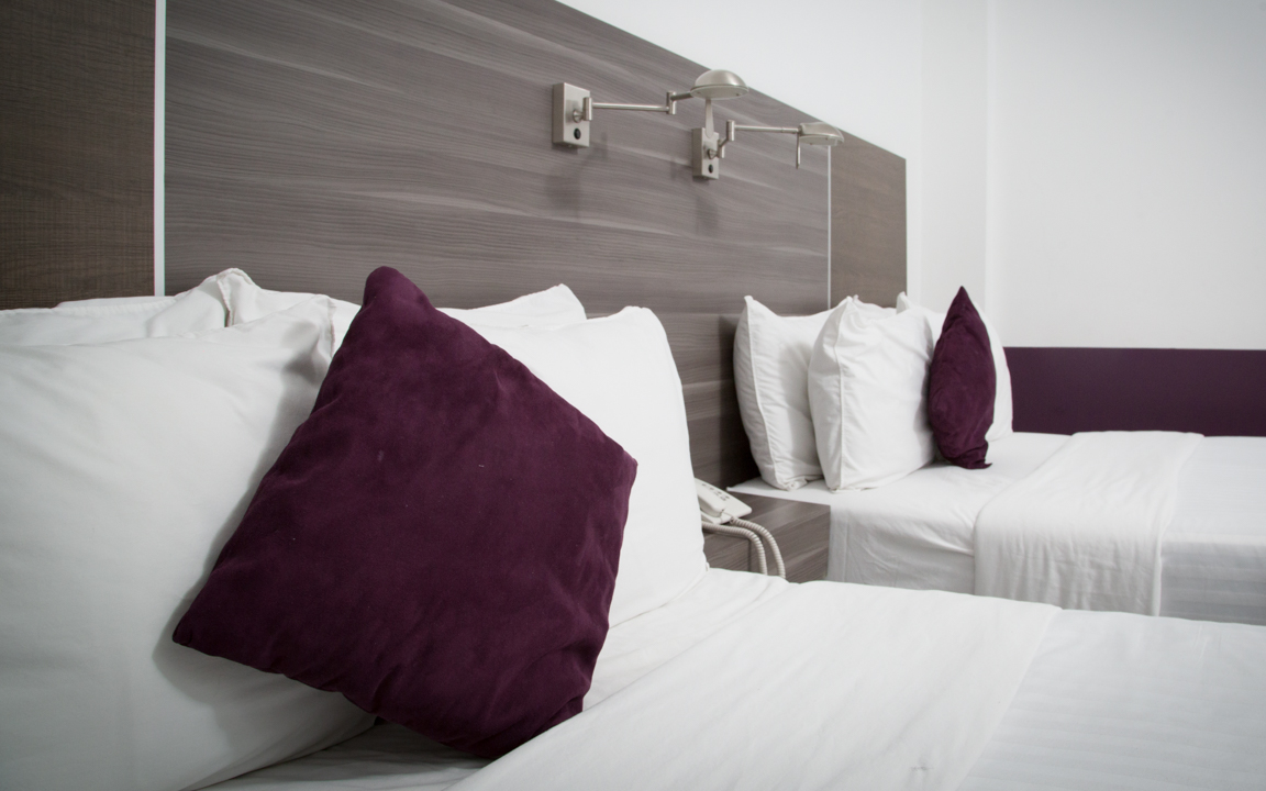https://www.hotelmsmexico.com/wp-content/uploads/2019/06/King-1.jpg